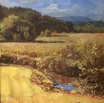 Golden Fields Ed -Cahill